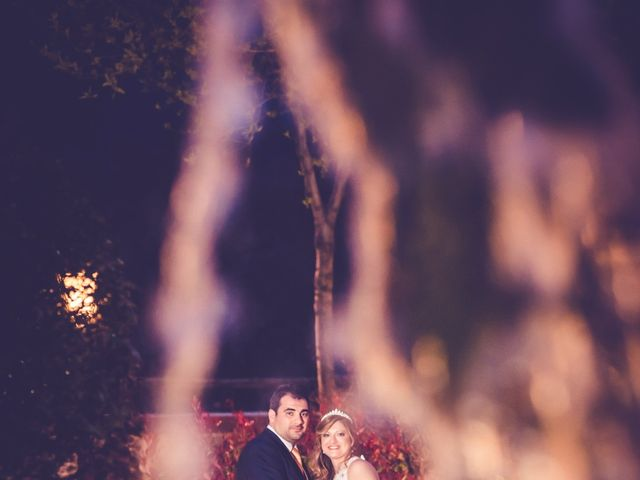 La boda de Sergio y Marian en Miraflores De La Sierra, Madrid 1