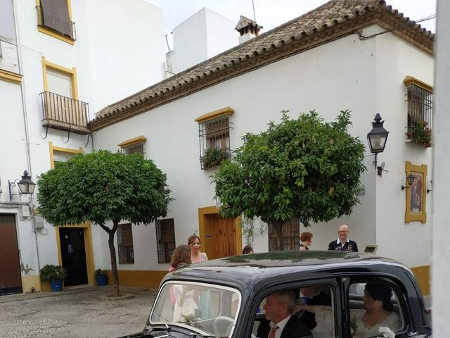 La boda de José y Beatriz en Córdoba, Córdoba 4