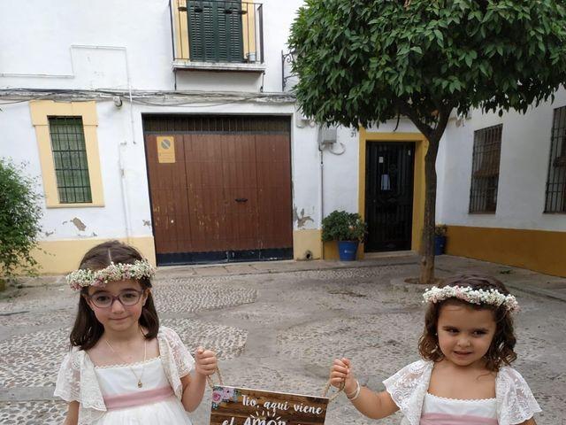 La boda de José y Beatriz en Córdoba, Córdoba 15