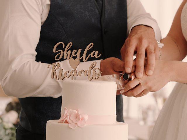 La boda de Ricardo y Sheila en Villamayor, Salamanca 15