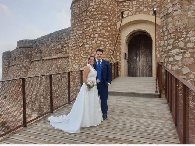 La boda de Jose Luis y Karina en Albacete, Albacete 14