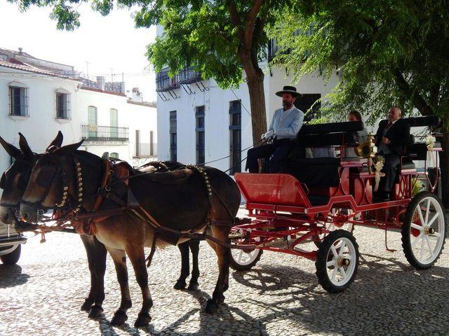 La boda de Natalia y Álvaro en Aracena, Huelva 1