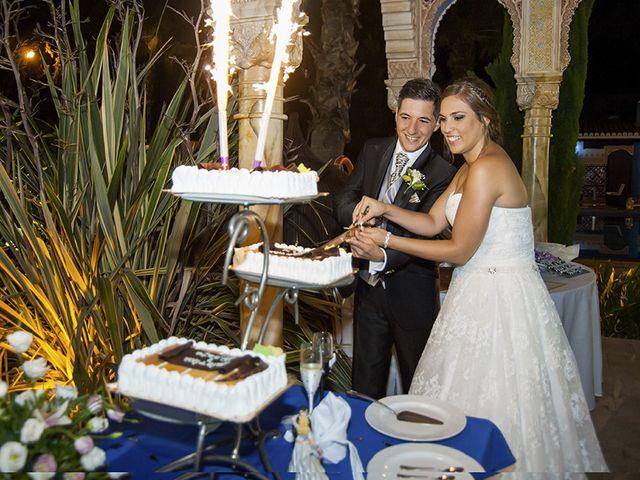 La boda de Borja y Cristina en Alhaurin El Grande, Málaga 15