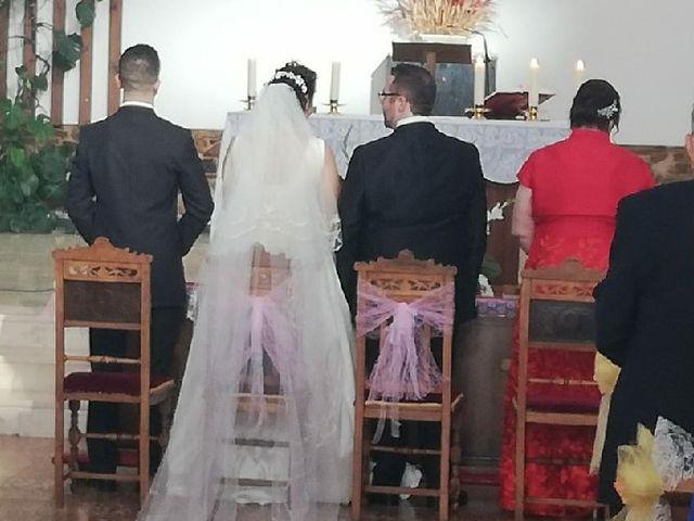 La boda de Alejandro  y Virginia  en El Robledo, Cáceres 2