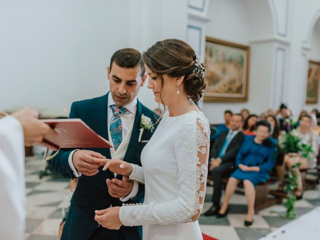 La boda de Francisco y Gwendolyne en Olula Del Rio, Almería 41