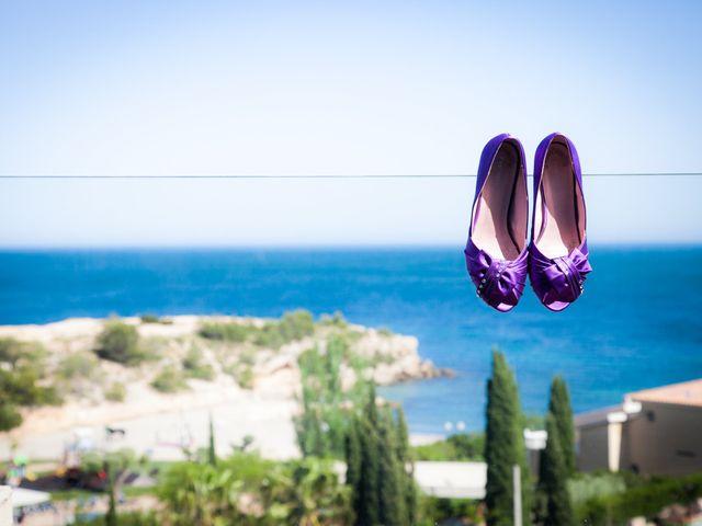 La boda de Alejandro y Sonia en L' Ametlla De Mar, Tarragona 12