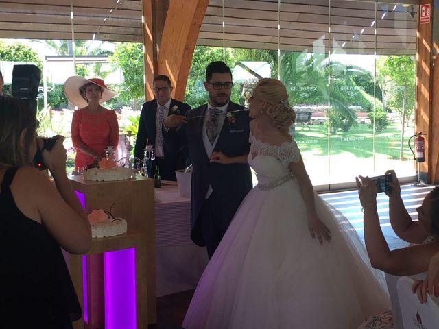 La boda de Adrián y Vanessa en Alzira, Valencia 2