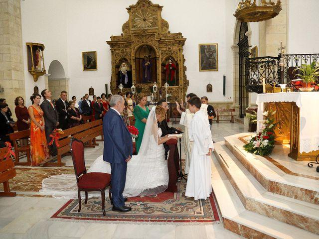 La boda de Antonio y Amanda en Jerez De La Frontera, Cádiz 17