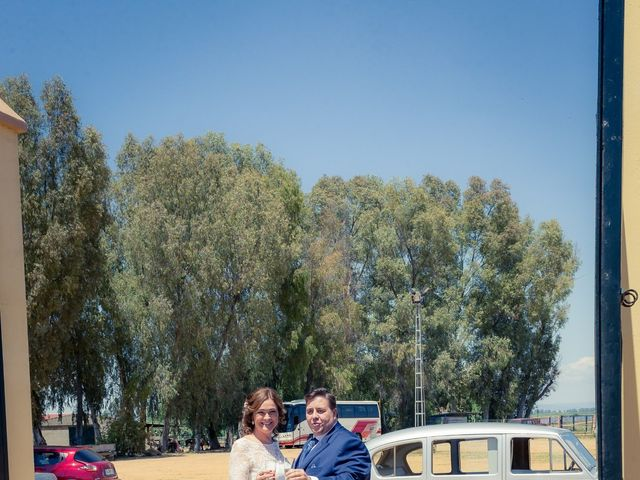 La boda de Roberto y Tamara en La Rinconada, Sevilla 72