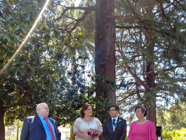 La boda de Iván  y Desirée en Puente Viesgo, Cantabria 11