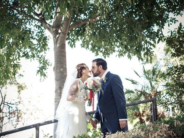 La boda de Carlos y Helena en Málaga, Málaga 39