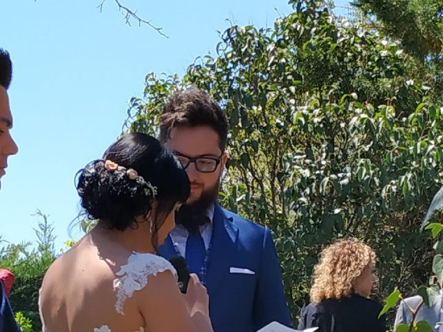 La boda de Julián  y Saray en Peñaranda De Bracamonte, Salamanca 2