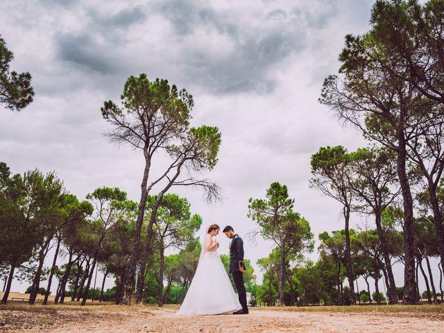 La boda de José y Rosa en Albacete, Albacete 27