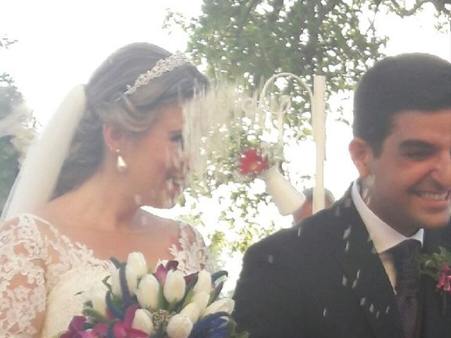 La boda de Antonio  y Verónica  en Jerez De La Frontera, Cádiz 8