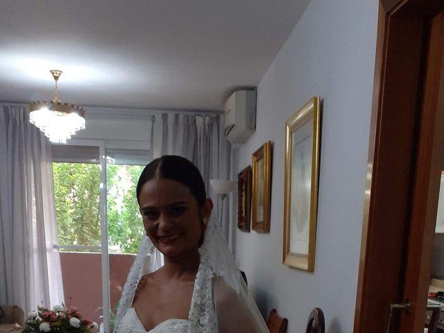 La boda de Luis y Virginia en Aldaia, Valencia 5