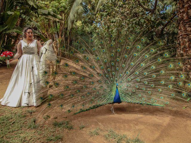 La boda de Juanje y Sarai en Santa Cruz De Tenerife, Santa Cruz de Tenerife 1