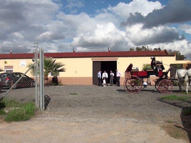 La boda de José Miguel y Pepi en La Puebla Del Rio, Sevilla 23