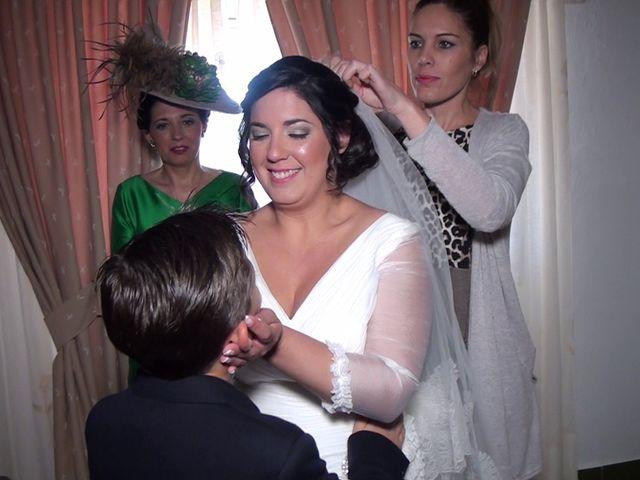 La boda de Antonio Manuel y Vanesa en El Garrobo, Sevilla 10