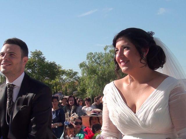 La boda de Antonio Manuel y Vanesa en El Garrobo, Sevilla 20