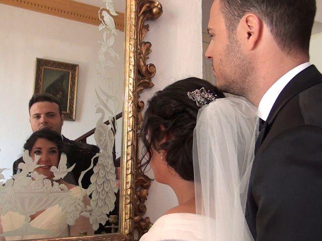 La boda de Antonio Manuel y Vanesa en El Garrobo, Sevilla 29