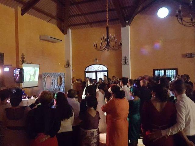 La boda de Antonio Manuel y Vanesa en El Garrobo, Sevilla 37