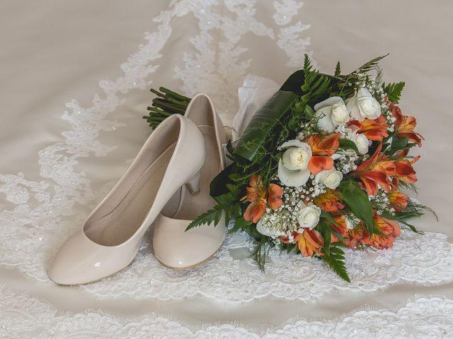 La boda de Luis y Laura en Piedrabuena, Ciudad Real 3