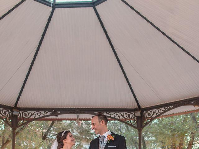 La boda de Luis y Laura en Piedrabuena, Ciudad Real 1