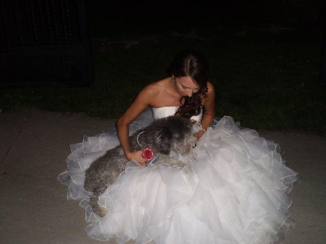 La boda de Andrea y Javier en Campillo De Ranas, Guadalajara 5