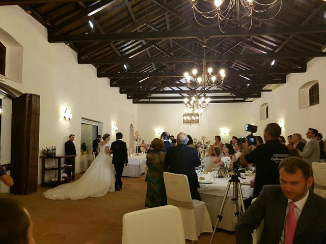 La boda de Iván  y Bárbara  en Bormujos, Sevilla 5
