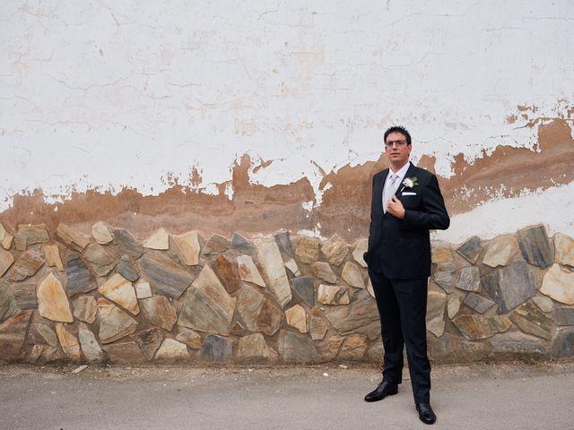 La boda de Javier y Adriana en Alcanadre, La Rioja 4