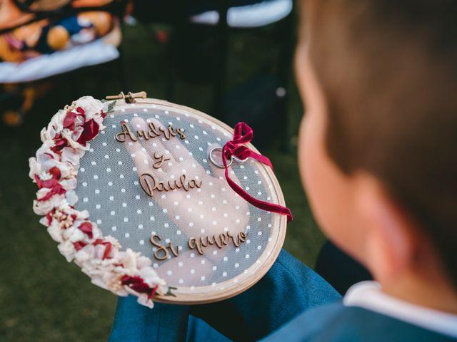 La boda de Andrés y Paula en Collado Villalba, Madrid 39