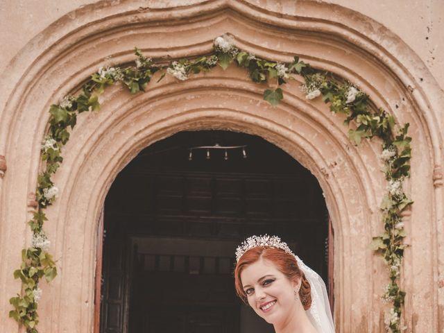 La boda de Almudena y Ismael en Puebla De La Reina, Badajoz 25