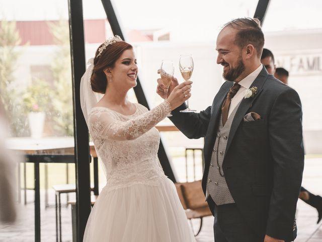 La boda de Almudena y Ismael en Puebla De La Reina, Badajoz 35