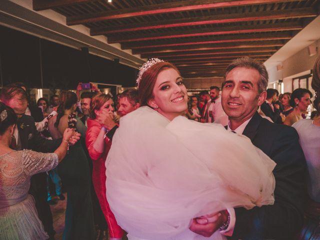 La boda de Almudena y Ismael en Puebla De La Reina, Badajoz 39