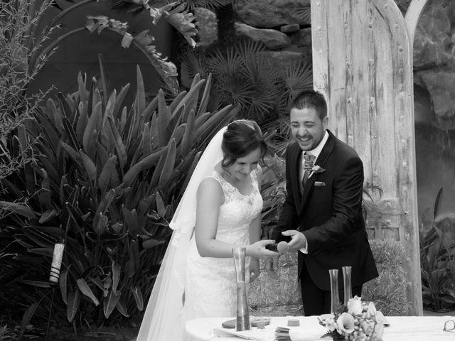 La boda de Cesar y Ana Cristina en Almería, Almería 42