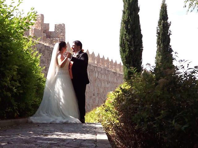 La boda de Jose y Alicia en Ávila, Ávila 12