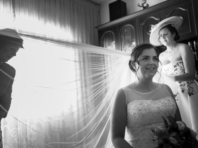 La boda de Jose y Alicia en Ávila, Ávila 23