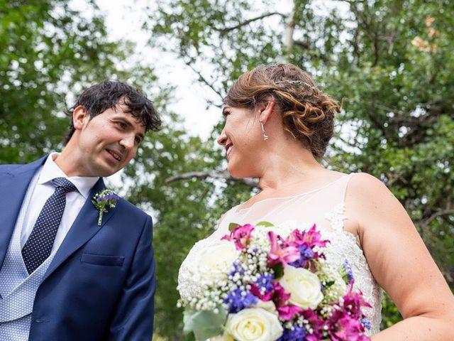 La boda de Ricardo y Yolanda en Navacepedilla De Corneja, Ávila 8