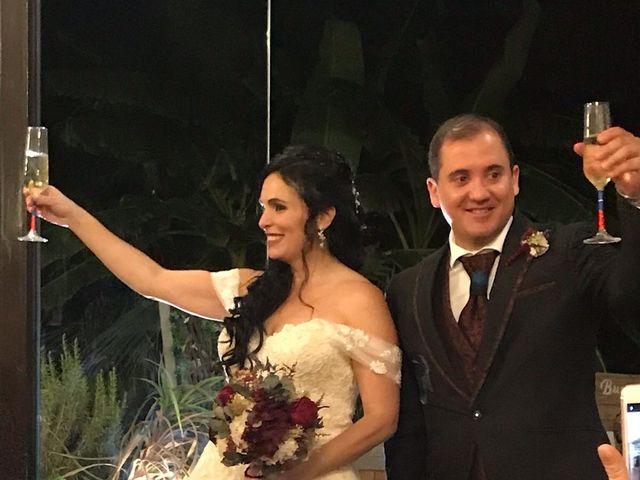 La boda de Luis y Alida en Cubas De La Sagra, Madrid 11