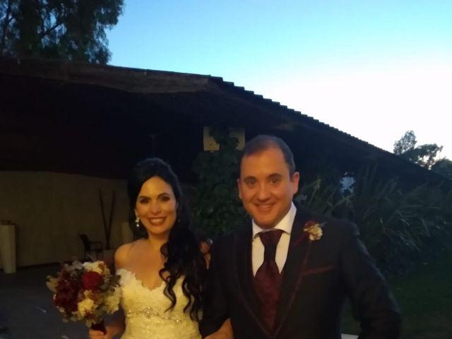 La boda de Luis y Alida en Cubas De La Sagra, Madrid 13