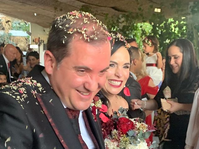La boda de Luis y Alida en Cubas De La Sagra, Madrid 14