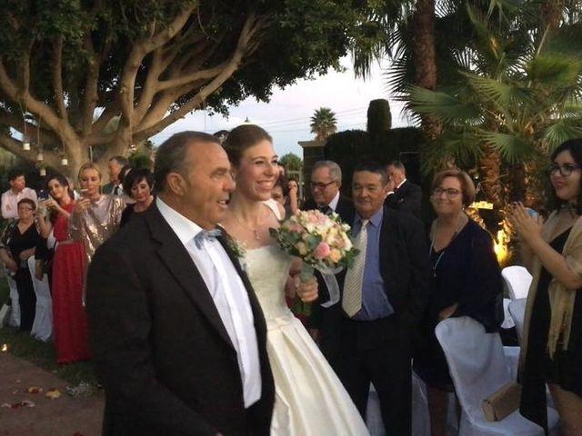 La boda de David y Amanda en Elx/elche, Alicante 1