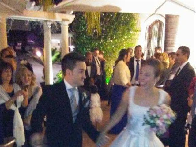 La boda de David y Amanda en Elx/elche, Alicante 4