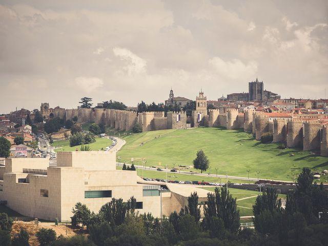 La boda de Nieves y Pedro en Ávila, Ávila 7