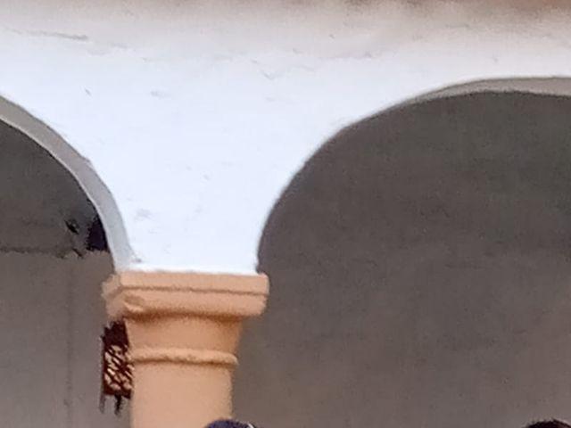 La boda de Carmen y Fernando  en Alcala De Guadaira, Sevilla 24