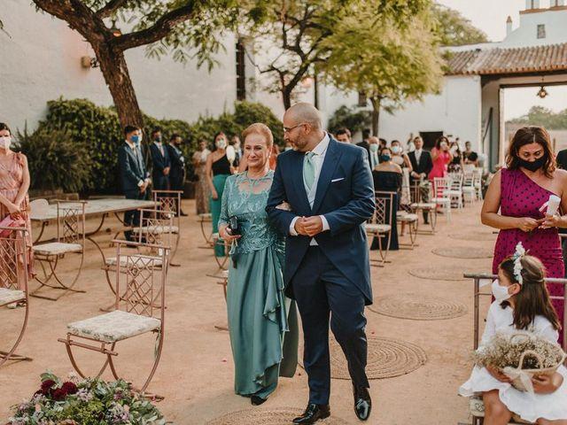 La boda de Carmen y Fernando  en Alcala De Guadaira, Sevilla 40