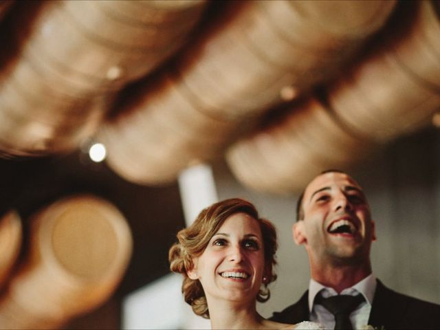 La boda de Jose Alberto y Blanca en Villabuena De Alava, Álava 11