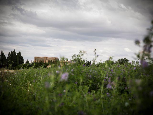 La boda de Ismael y Elisa en Toledo, Toledo 9