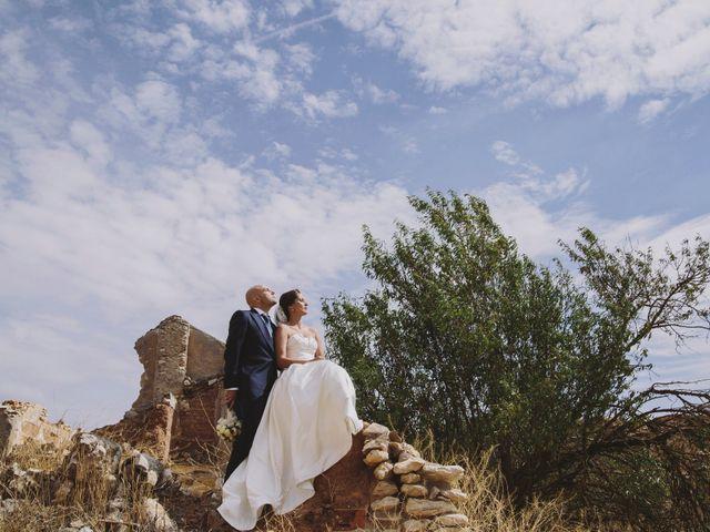 La boda de Jose y Ana en Pedro Muñoz, Ciudad Real 20