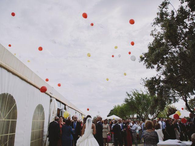 La boda de Jose y Ana en Pedro Muñoz, Ciudad Real 24